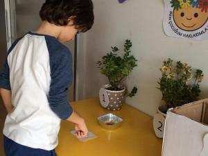 Dünya Çocuk Hakları Günü etkinliği, Limon Anaokulu'ndaki öğrenciler sınıflarında yetiştirmek istedikleri çiçeğe oy kullanımı yaparak karar verdiler.