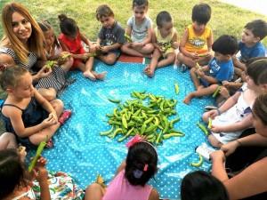 Yaz sebzelerinden biber. Merak ettik inceledik,tadına baktık ,besin değerini öğrendik ve kış için kurumaya bıraktık .